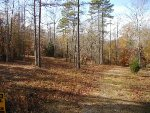 Lake Hartwell real estate: waterfront lot in Townville, SC